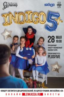 Шоу-программа «Индиго»