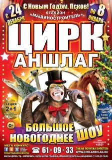 Цирк Аншлаг.Большое новогоднее шоу.